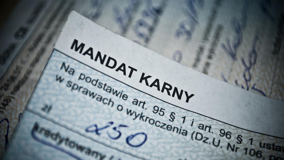 Taryfikator mandatów 2021